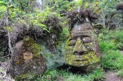 the stone face on Floreana Island Galapagos Islands Ecuador
