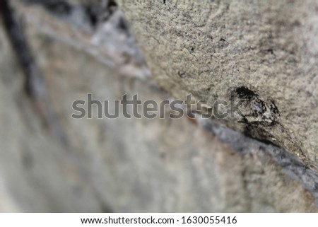 The stone wall is covered with large cracks. Blurred background.