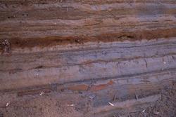 The stratum layers