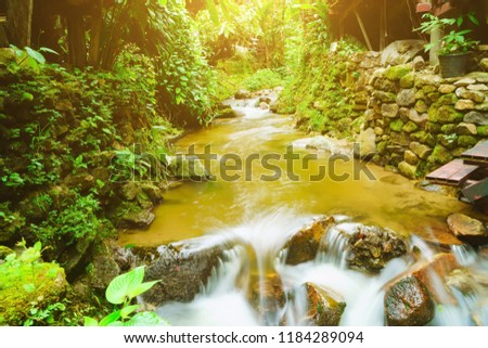 The stream flowing downstream from the upper reaches of the forest is a watershed of abundance, The stream of abundant streams.
