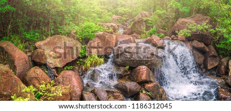 The streams in the forest washed down from the rocks to form a beautiful waterfall.