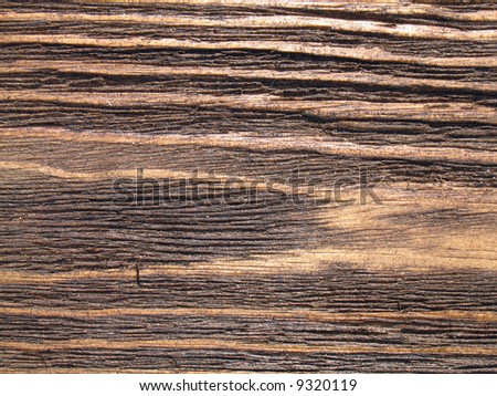 The structure of wood is photographed close up
