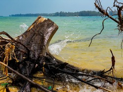 The stub drown in the sea. This view of coast of island in thailand. This background of shore of island in pacific ocean. In South china sea. Wood,Sand,water,and small boat.