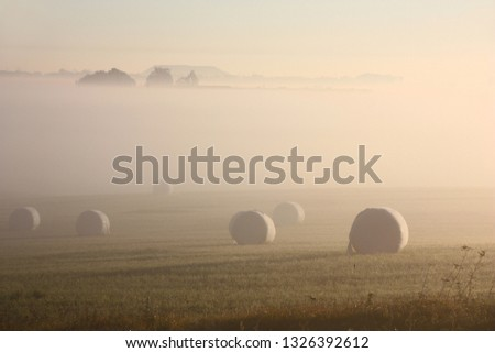 The sun and fog do a usual rural picture with coils in the field of mystical.