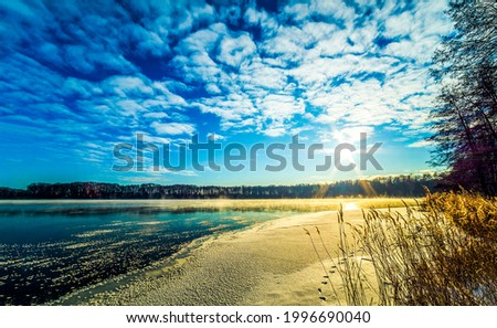 The sun rises over a forest lake. Forest lake shore in morning time. Morning forest lake view. Forest lake in early morning