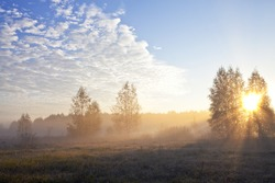 The sun's rays on the meadow during the misty morning in the fall