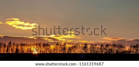 The sun setting behind a ridge of silhouetted trees in Czechia, Europe #1161319687