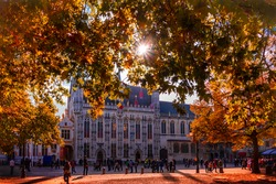 The sun shines through autumn leaves over the City Hall of Bruges in Belgium