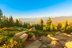 the sunset panorama on Californian excursion hike, Zumwalt Meadows hiking in Kings Canyon National Park, a large clearing in the forest with wildflowers and granite cliffs of Grand Sentinel.