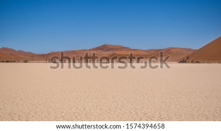 The surface area of Deadvlei in the Namib Desert in Namibia.