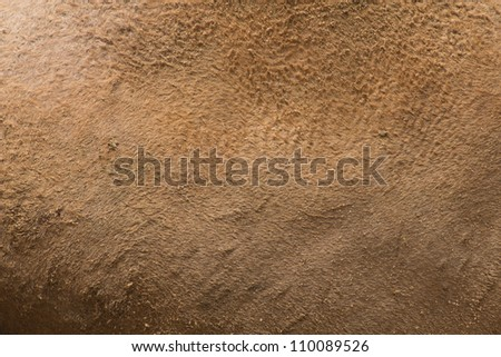 The surface of the camel, brown leather.