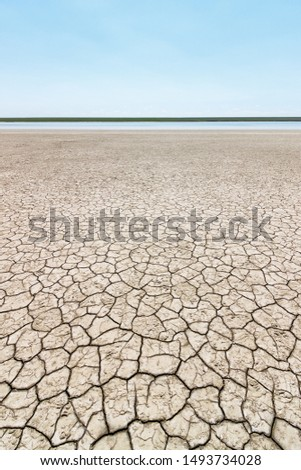 The surface of the cracked dry ground with the tiny stripe of the water and green grasses on the horizon. Gruzskoe lake, Rostov-on-Don region, Russia. Foto d'archivio ©