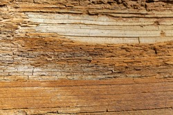 The surface of thin bedded layers of Posidonia Shale from the Lower Jurassic of Southern Germany.