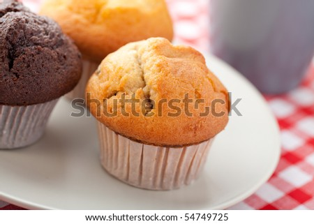 the sweet muffin on checkered tablecloth
