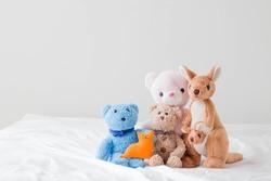 The teddy bear and the gang
