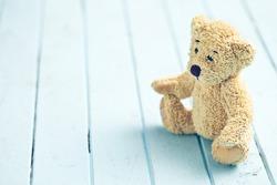the teddy bear on blue table
