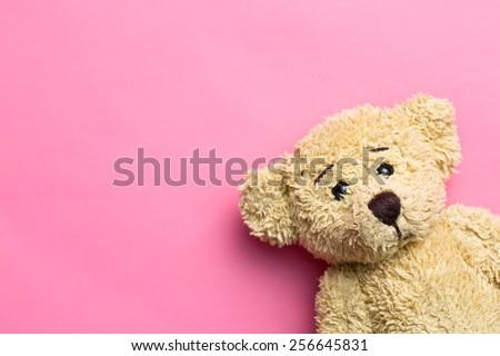 the teddy bear on pink...