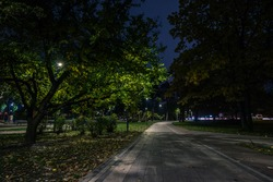 The teiled road in the night park with lanterns in autumn. Benches in the park during the autumn season at night. Illumination of a park road with lanterns at night. Park Kyoto