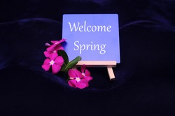 The text of Welcome Spring on a board with flowers as a business concept.