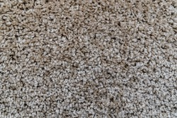 The texture of a gray-brown carpet. Fleecy surface. Background