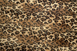 The texture of leopard print fabric