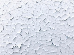 The texture of the cracked paint. White texture with craquelure effect