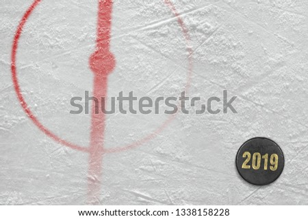 The texture of the hockey arena with markup and puck, the season of 2019. Concept, hockey, wallpaper