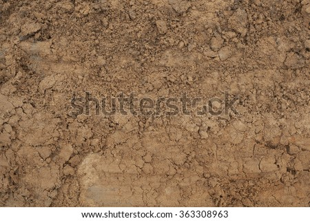 The texture of the mud or wet soil stock photo