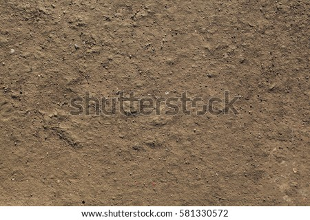 The texture of the mud or wet soil #581330572