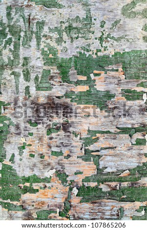 The texture of the old plywood boards with peeling paint