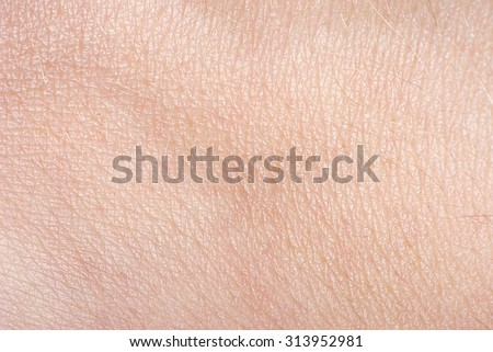 The texture of the skin #313952981