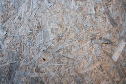 The texture of the slab of wood. Background, tree ecology. Natural natural drawing.