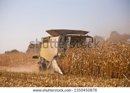 The theme is agriculture. A modern combine harvester in the field performs grain harvesting on a sunny day against a blue sky. Farm and automation using machines #1350450878