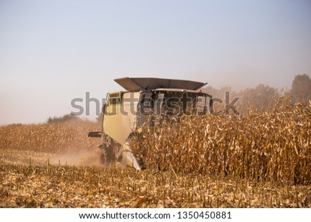 The theme is agriculture. A modern combine harvester in the field performs grain harvesting on a sunny day against a blue sky. Farm and automation using machines #1350450881