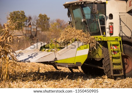 The theme is agriculture. A modern combine harvester in the field performs grain harvesting on a sunny day against a blue sky. Farm and automation using machines #1350450905