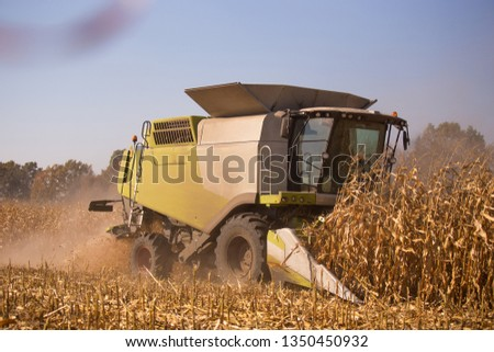 The theme is agriculture. A modern combine harvester in the field performs grain harvesting on a sunny day against a blue sky. Farm and automation using machines #1350450932