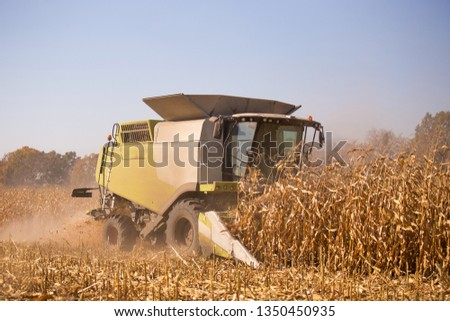 The theme is agriculture. A modern combine harvester in the field performs grain harvesting on a sunny day against a blue sky. Farm and automation using machines #1350450935