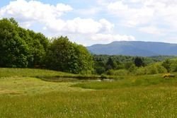 The Thousand ponds, Plateau of Thousand Ponds,  Mille Étangs located in the Haute-Saône department in Franche-Comté
