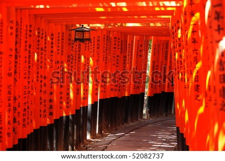 the thousand torii gates with names of donators