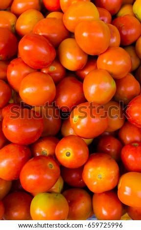 the tomato #659725996