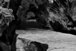 The Top of a Rock Shelf, Showing Lower Close Focus to the Mineral Stepped Edge, Leading to a Blurred Tree Root Cave Entrance.