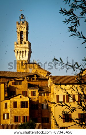The top of the famous Torre del Mangia in Piazza del Campo, Siena, Italy, seen from north west. Flocks of birds all around it. Portrait orientation.
