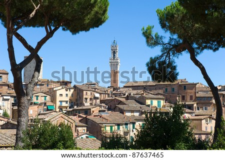 The Torre del Mangia tower in middle of Siena in Tuscany in Italy.
