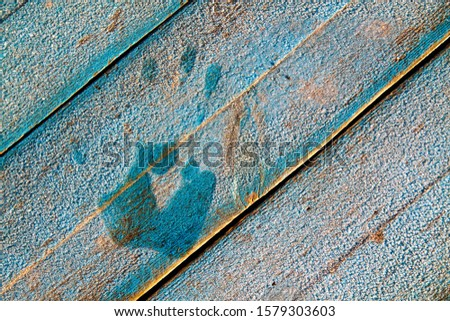 The trace of the hand, fingers in the frost on blue wooden boards. Winter background. The warmth of the hands. Warm with a warm palm. #1579303603