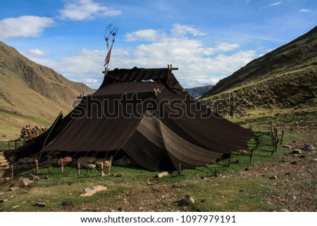 The traditional old tibetan black wool nomadic tent  on the mountains in Central Tibet. The best trekking activity in the mountain.