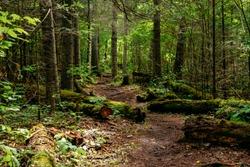 The trail in Kakabeka Falls Provincial Park, Thunder Bay, Ontario, Canada