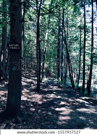 The trail path and trail route marker inside Mine Hills Preserve in the woods in New England Roxbury Connecticut United States.