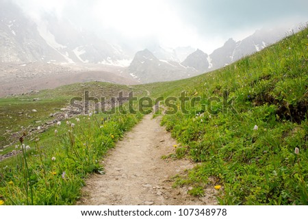 The trail to the glacier in the Alps during the summer season