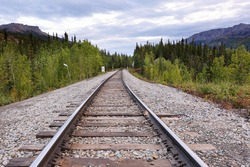 The train track at Denali National Park.  In the summer season the train stops twice daily, connecting Denali to Anchorage, Talkeetna and Fairbanks.