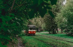 The tram goes through dense thickets of trees. Summer landscape in the park with the tram. Izhevsk, Russia.